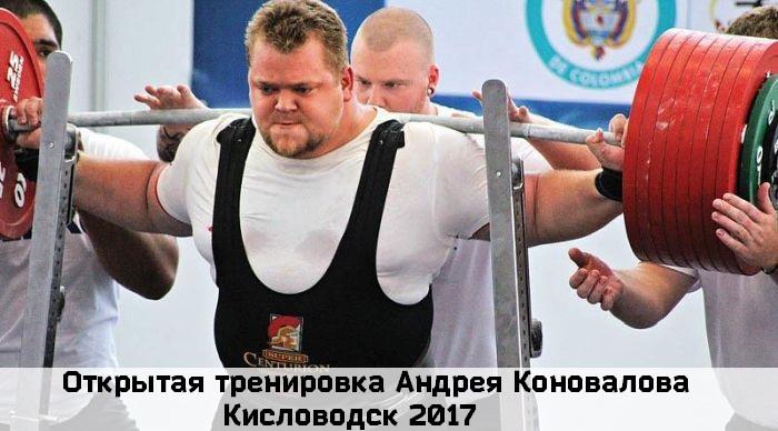 Андрея Коновалова